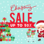 Christmas Day Sale